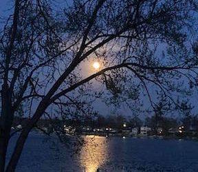 The Moon Is Always Full